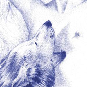 Detalle de ilustración realista a bolígrafo Bic azul de una chica rodeada de lobos