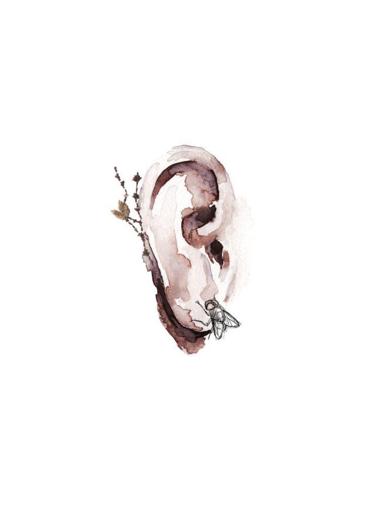 Acuarela de una oreja con una mosca dibujada y una flor bordada
