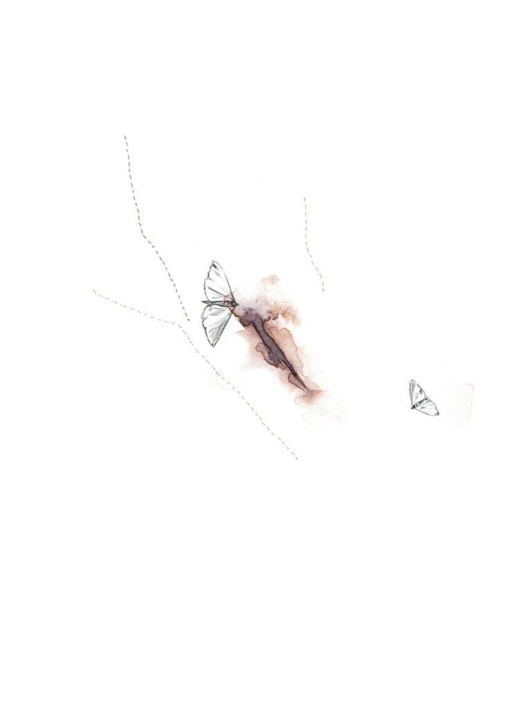 Acuarela de una vagina con polillas a lápiz
